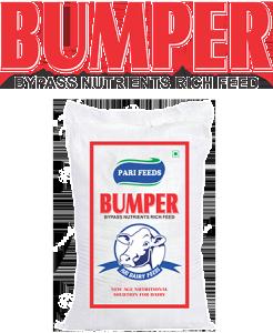 Bumper - Bag With Logo